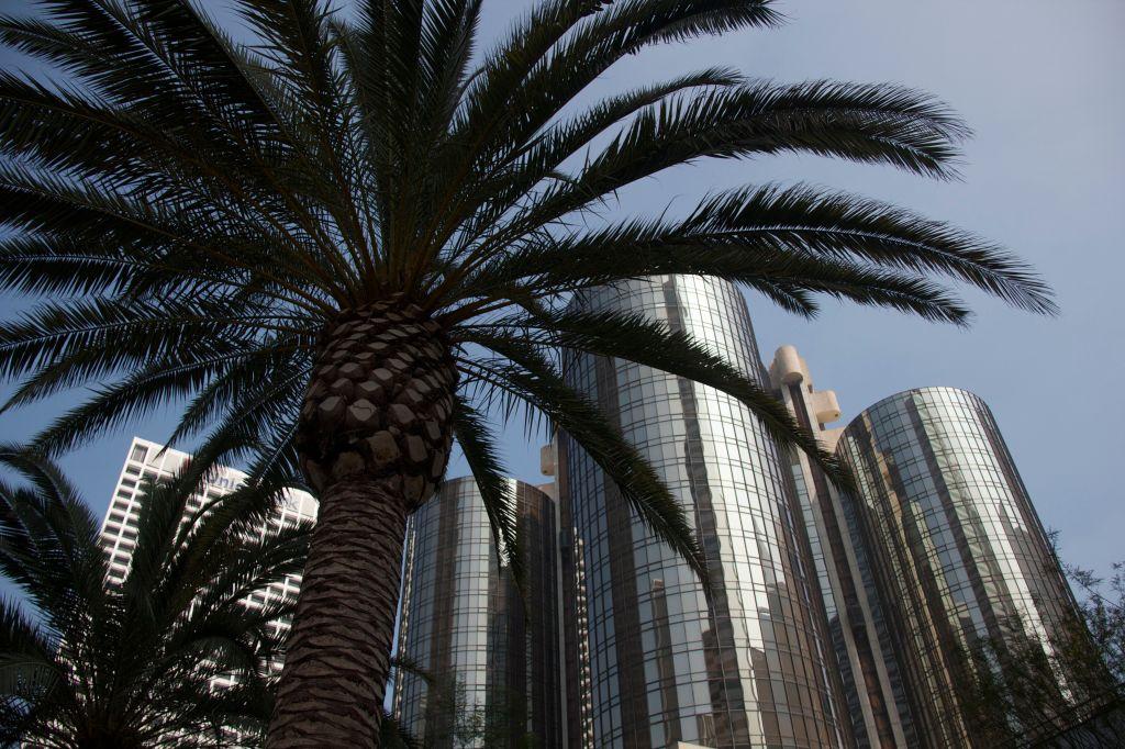 Palm Bonaventure